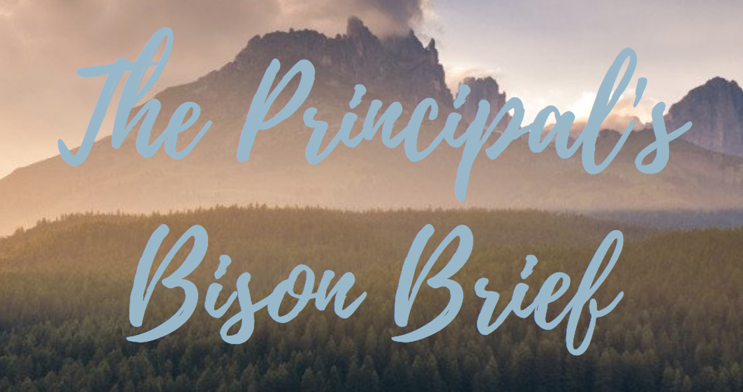 Mrs. Rogaliner's Bison Brief (Week of 2/10)