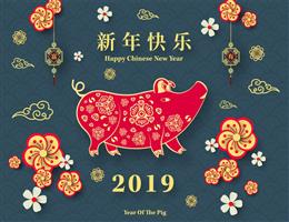 https://www.awarenessdays.com/awareness-days-calendar/chinese-new-year-2019/