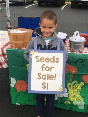 seeds for sale