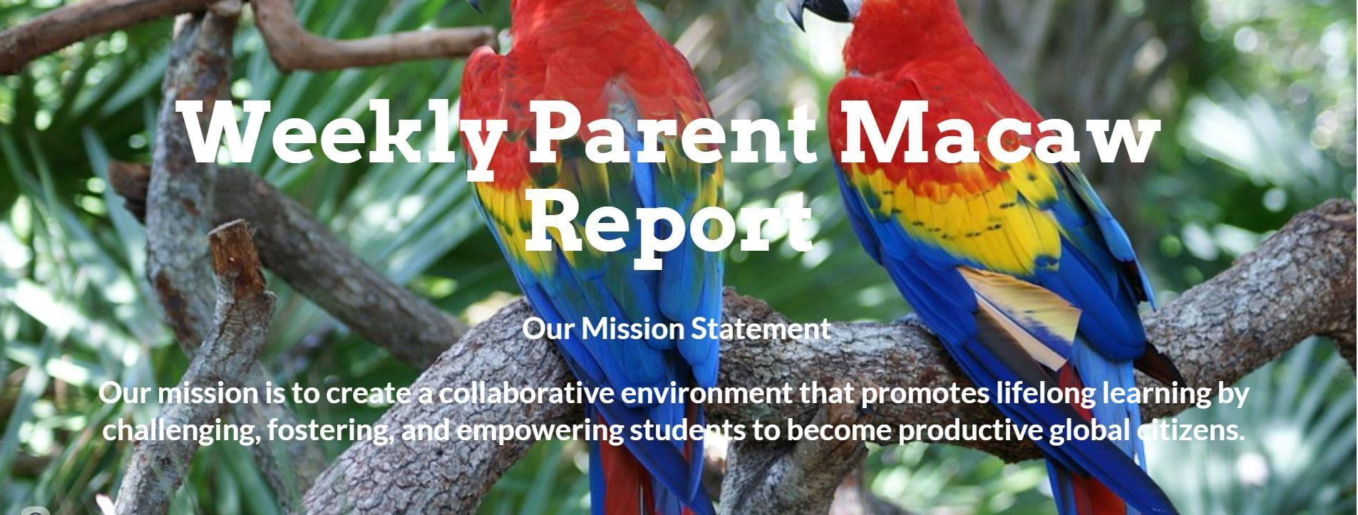 Weekly Parent Macaw Report