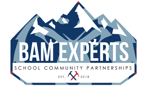 BAM Experts! Click above to learn more!