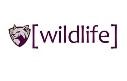 WildLife After School Clubs