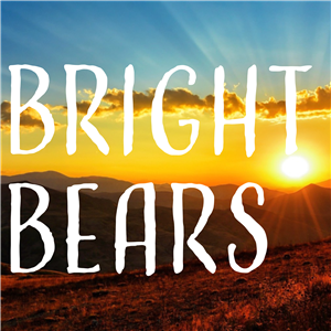 Bright Bears Button