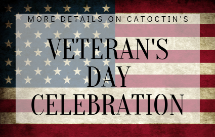 veterans day celebration details