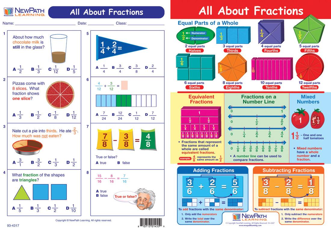 Third Grade Study Guides