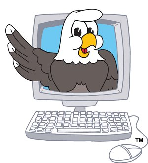 Eagle in Computer