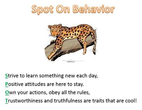 Spot on Behavior