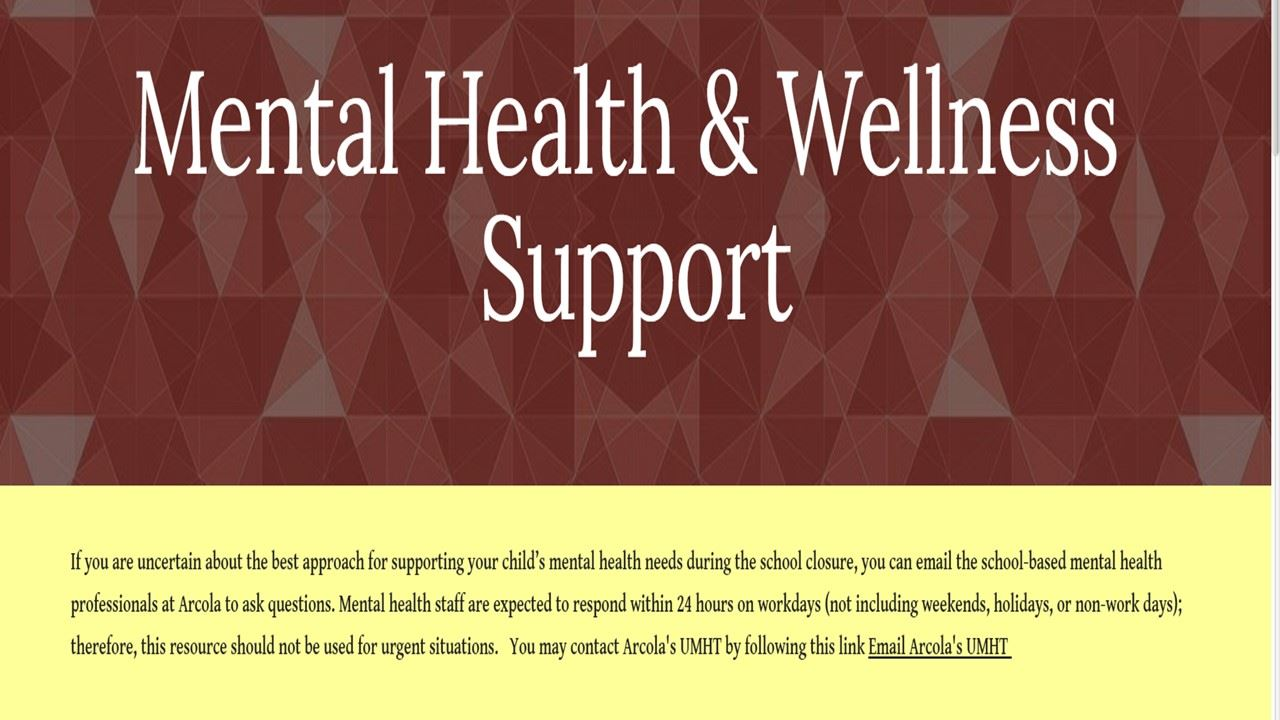 Wellness and Mental Health Support