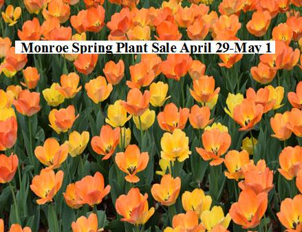 Monroe Spring Plant Sale April 29-May 1