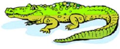 crocodile_mascot.jpg
