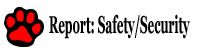 Report Safety Security