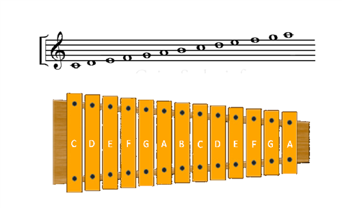 Xylophone Notes Chart Music / Musician's Pag...