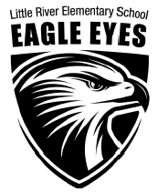 Eagle Eye Dad